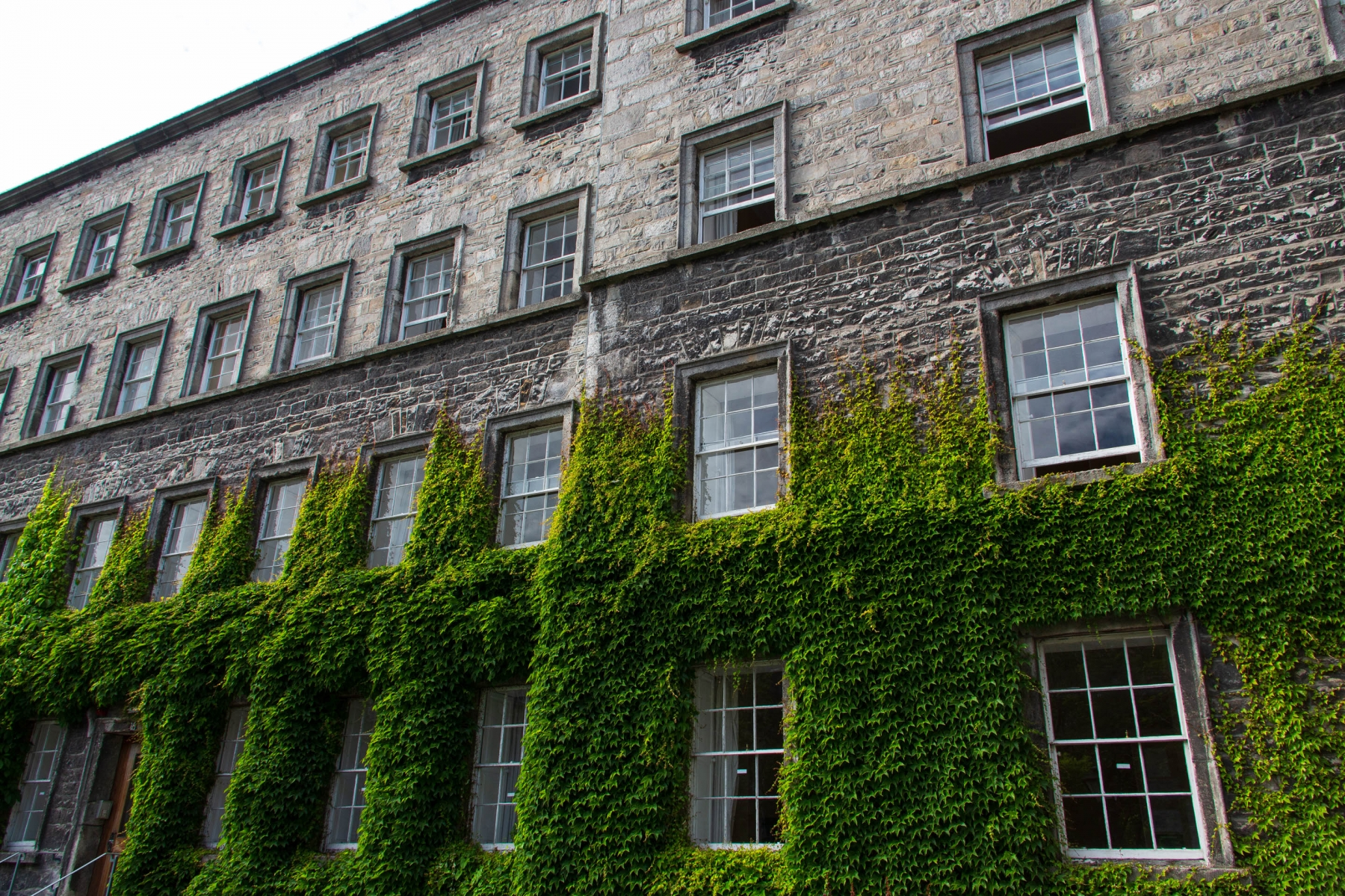 Walking around Trinity College.