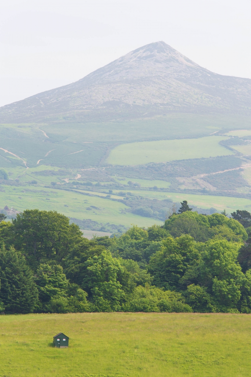 And some terrific vantage points from where you can see the Wicklow Mountains.