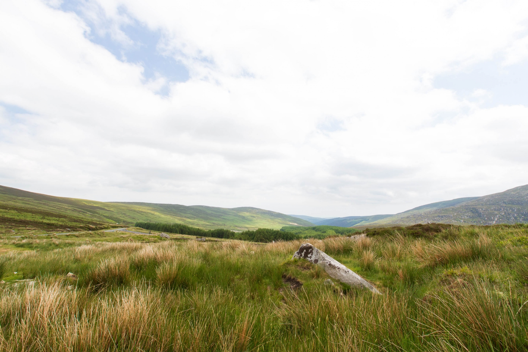 While not as rugged as Scotland, the Irish country side does have her charms..