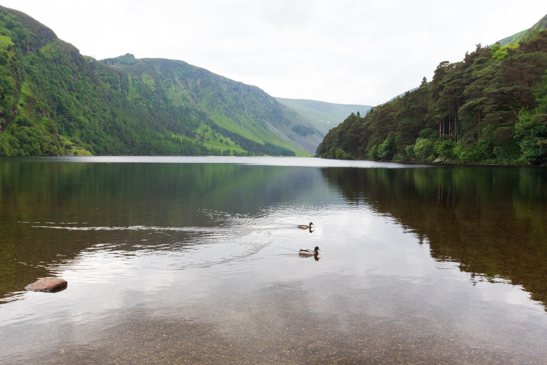 """GlendaLough from Irish Gleann Dá Loch, meaning """"Valley of two lakes"""". Here we can see the larger of the two lakes (The Upper Lake)"""