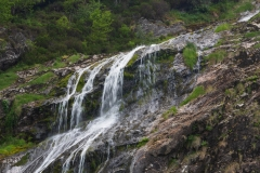 Powerscourt Waterfall is about 10 minutes drive S of the Gardens.