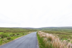 When driving around Ireland, always go for the road less traveled :)
